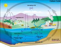 Диоксид углерода и парниковый эффект